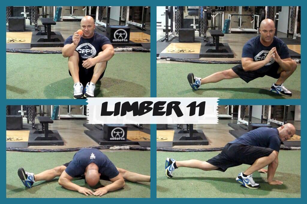 Limber11_pic