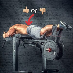 The TRUTH About Reverse Hypers and Low Back Pain, My 'Mount Rushmore' of Gym Pet Peeves & More!