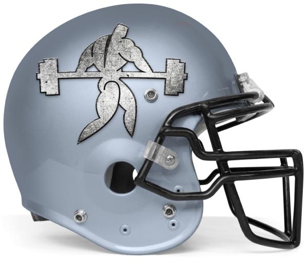 football-helmet-grey-DEFRANCO-CROP