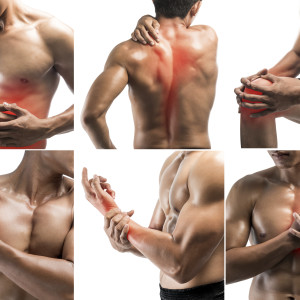No Pain, No Gain? [The Truth About Muscle Soreness]