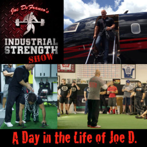 A Day in the Life of Joe D.